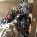 Environmental Waste Clearance
